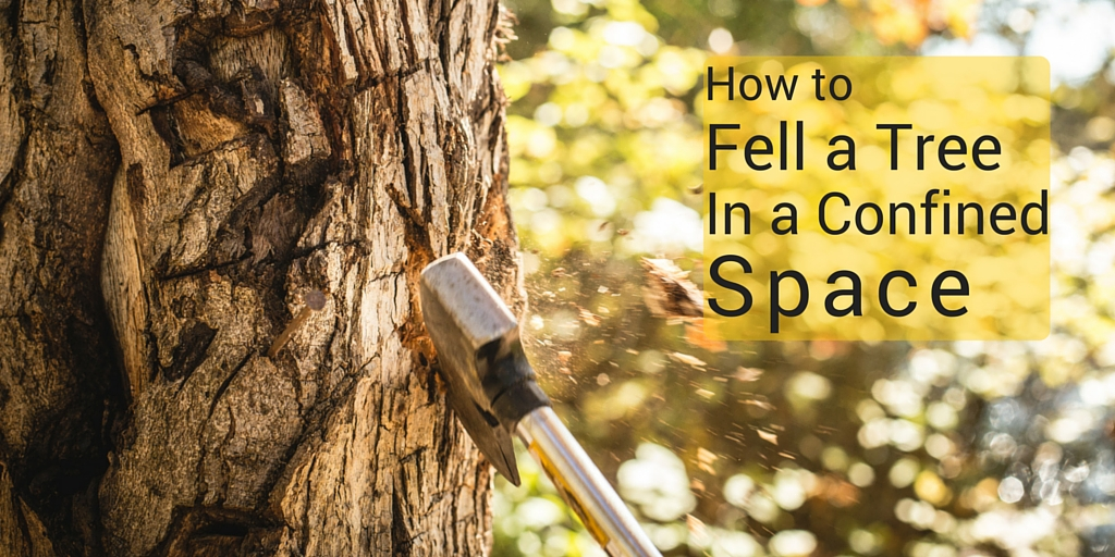 How to Fell a Tree in a Confined Space